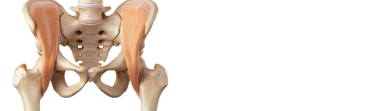 Hüftschmerzen - Schmerzen Hüfte Behandlung - EIM Praxis - Schmerzen ...