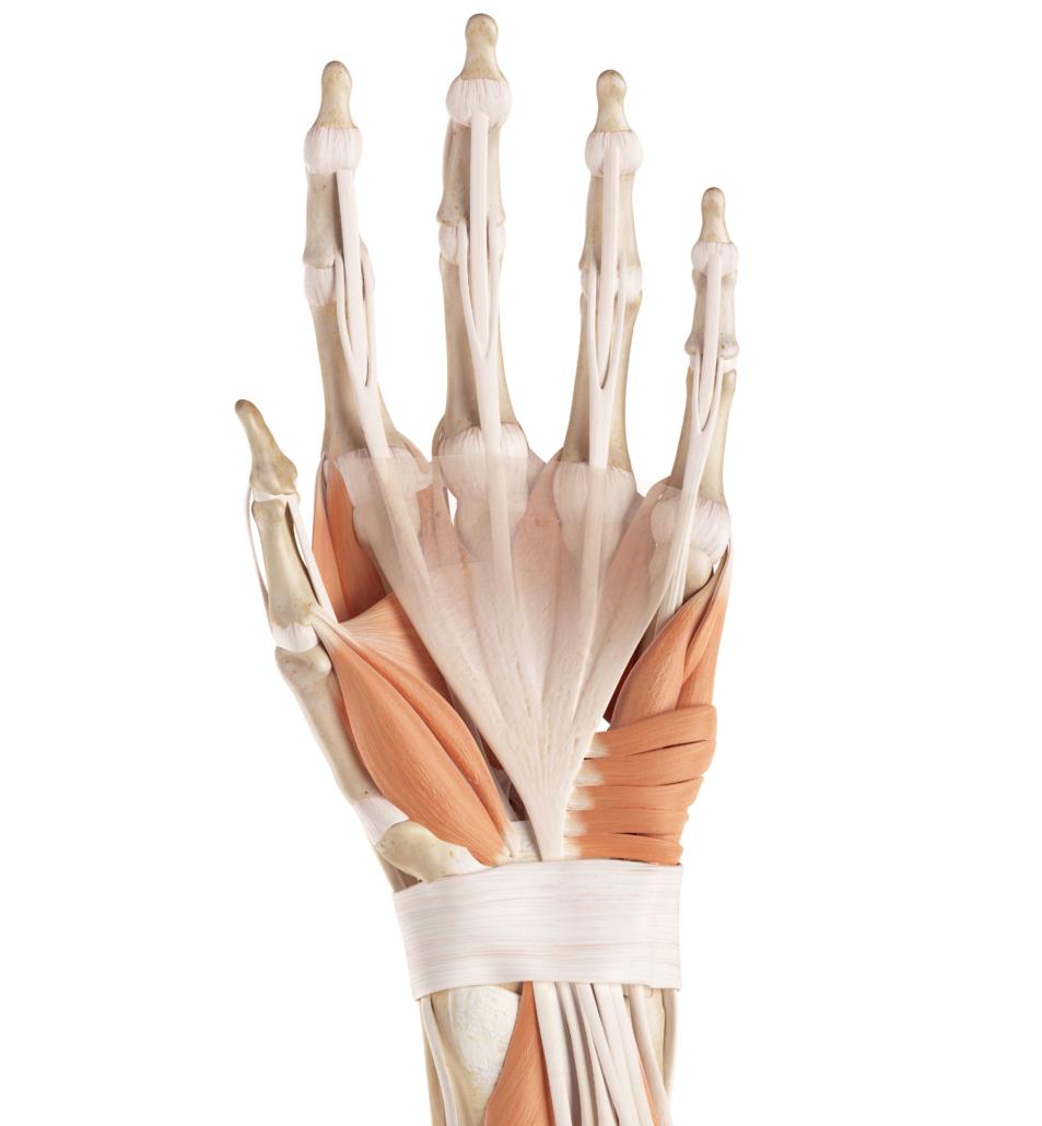 Finger Schmerzen